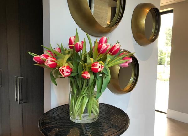 rood/witte tulpen