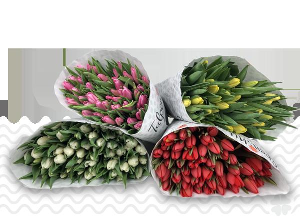 DIY-mengboeket-100-tulpen