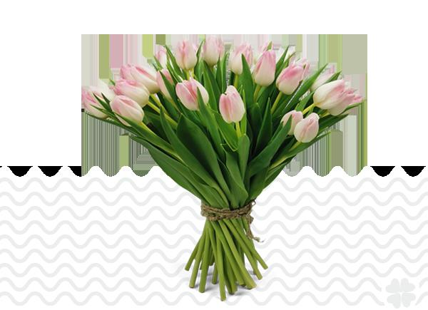 tulpen-boeketten-van-één-soort