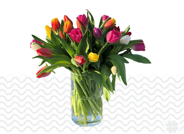 Bestel-Tulpen-vaas