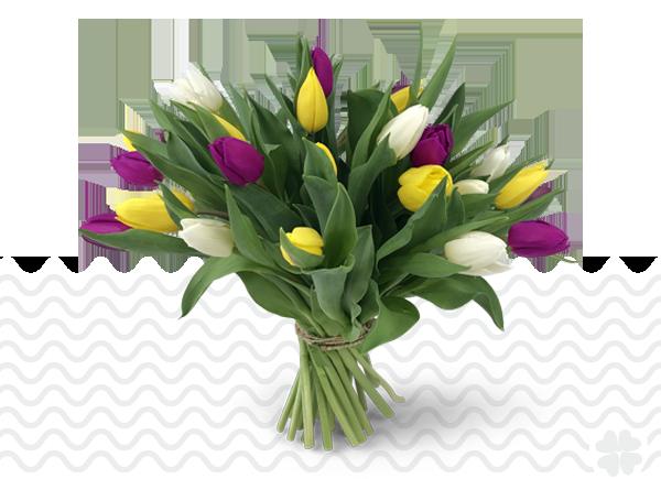 tulpen paas-boeket-geel-wit