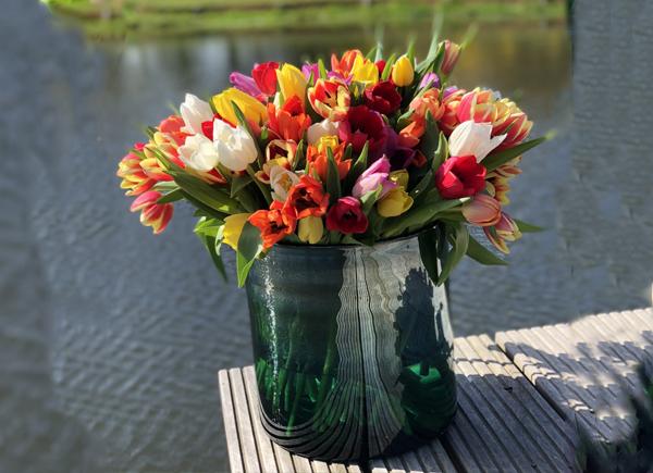 Tulpen-bezorgen-in-Noordwijk