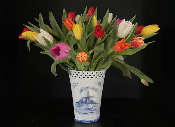 Tulpen-bestellen-in-Delft